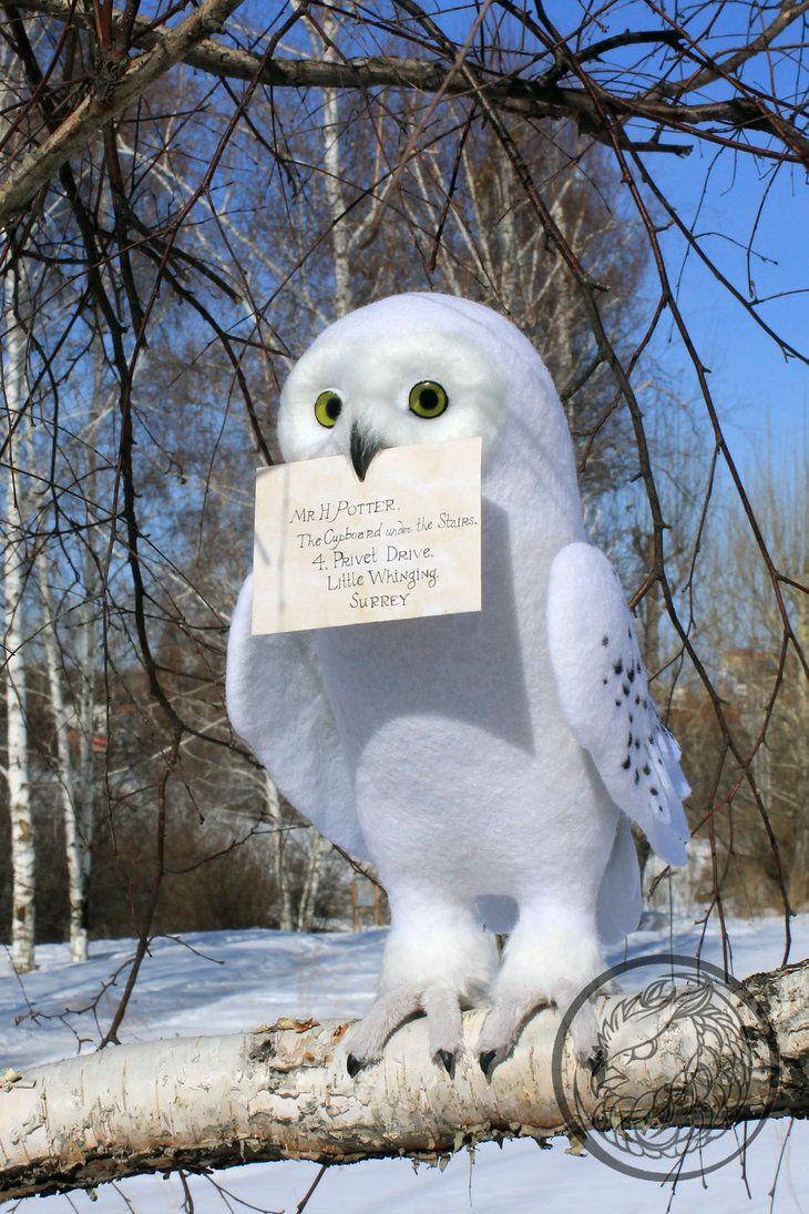 Hedwig Owl By Sillykoshka On Deviantart Harry Potter Owl