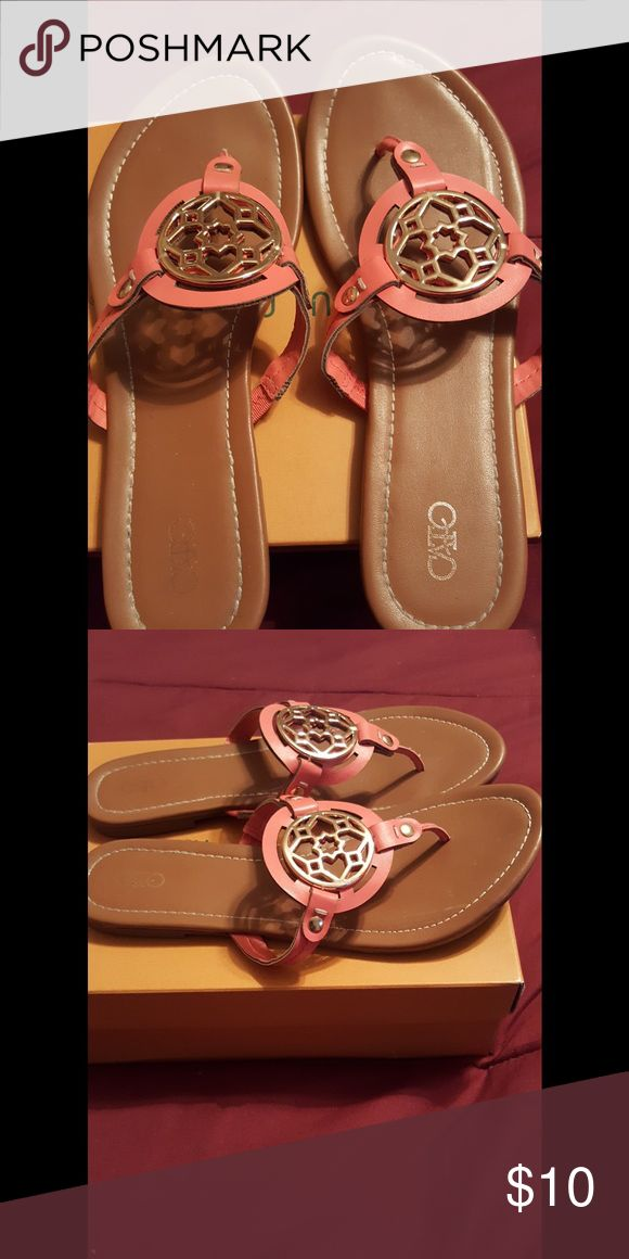 Coral Sandals Purchased these from Cato's.  Wore several times during the summer. Goes with so many colors and outfits. Cato Shoes Sandals