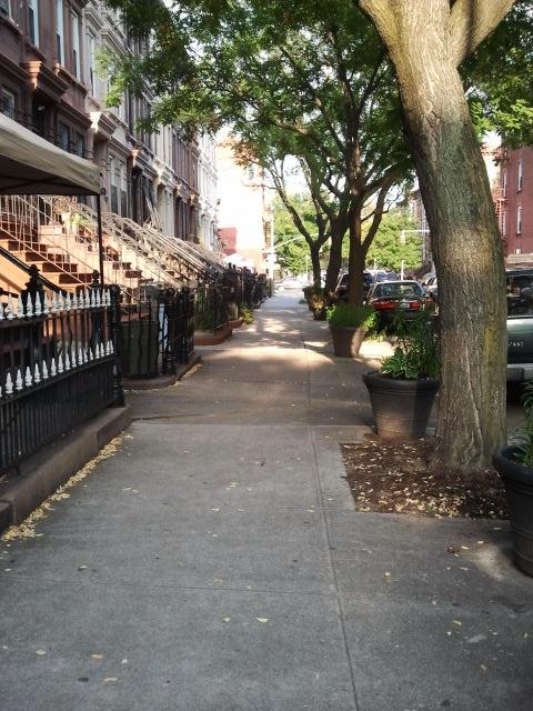 Summer day in Brooklyn