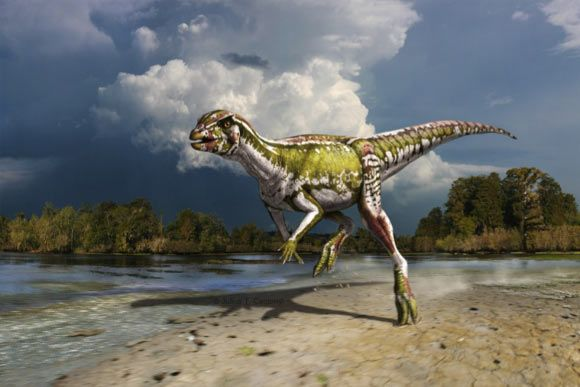 Paleontologists from the United States and Canada have described a new species of dinosaur named Albertadromeus syntarsus, the smallest herbivorous dinosaur known from Canada.