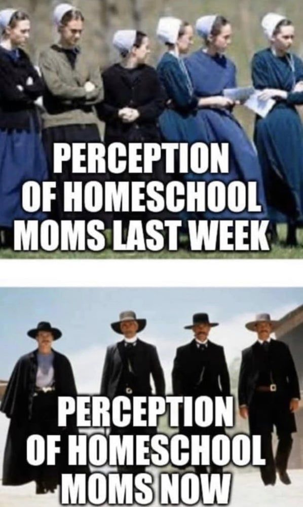 25 Funny Homeschool Memes 2020 Remote Learning Laughs Homeschool Memes Homeschool Mom Humor Homeschool Humor