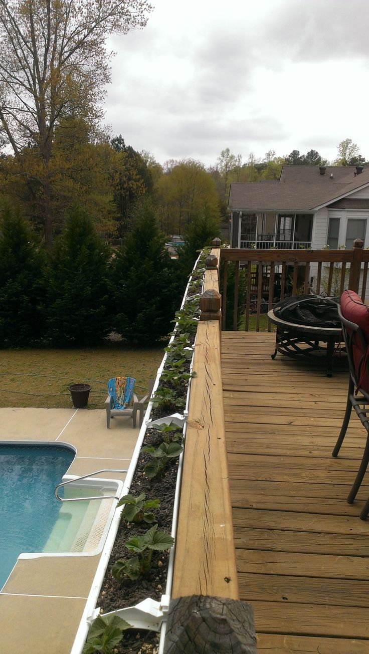 Best 25 deck railing planters ideas only on pinterest railing he made a planter using a gutter and planted some deck railing baanklon Images
