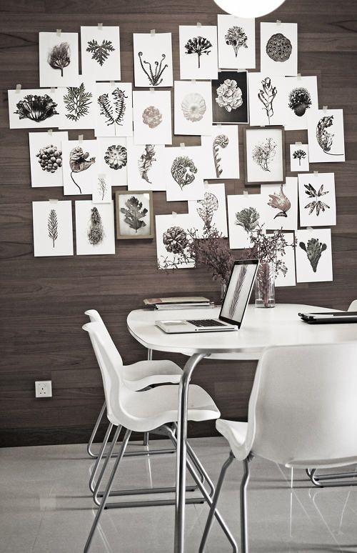 Wall of botanical prints. <3
