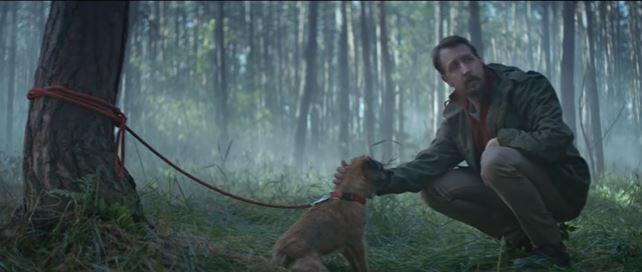 #DoNotAbandon Спасение или предательство? В социальной рекламе рассказали две истории о брошенных животных