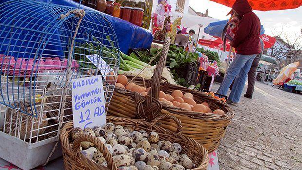 Gurmelere layık köylü pazarı-Gurmelere layık köylü pazarı Sığacık'ta Kaleiçi'nin tablo gibi sokakları her pazar köylü kadınların mutfaklarında hazırladığı yiyeceklerle donatılıyor. Kimileri yaban otlarıyla doldurdukları gözlemelerini, kabak çiçeği dolmalarını ayaküstü pişirip, sıcak ikram ediyor. Çayırlardan toplanmış nergis, anemon çiçekleri, taze kekik ve yemeklik yaban otları tezgâhları renklendiriyor.