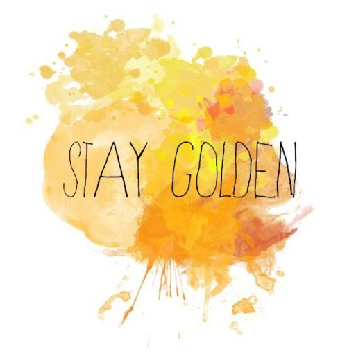 What Page Number Is The Quote Stay Gold Ponyboy On: 28 Best Images About Stay Golden Ponyboy On Pinterest