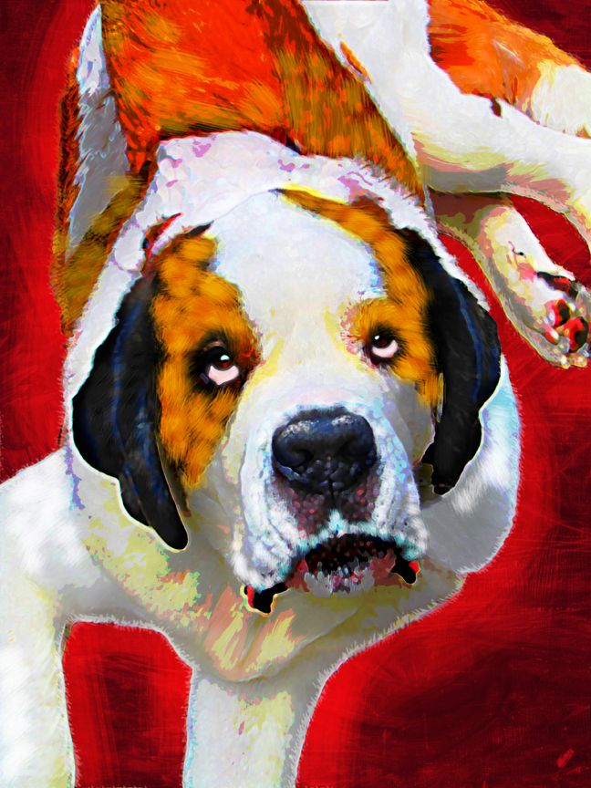 Saint Bernard Portrait from photo