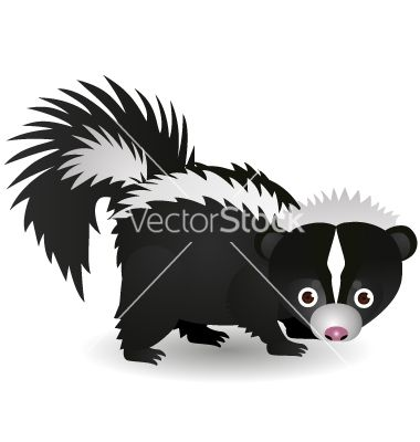 117 best images about SKUNK DRAWINGS