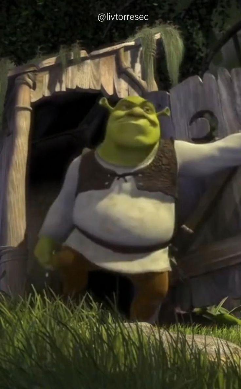 Disney Phone Wallpaper, Live Wallpaper Iphone, Live Wallpapers, Fiona Y Shrek, Shrek 2, Burro Do Shrek, Disney Art, Disney Pixar, Shrek Cake