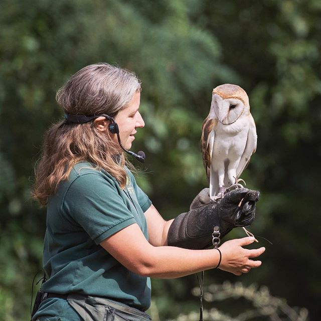 #besties  Susan (zoo keeper) and Luna (barn #owl) work together at the raptor center. This is National Zoo Keeper Week and we think our keepers are some of the most passionate, talented and #dedicated in the world. Luna agrees. 🦉💕 #nationalzookeeperweek #zoolife #zookeeper #animallovers #owlsofinstagram #barnowl #bestfriends #coworkers #owls #bestfriends