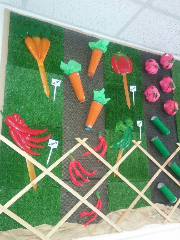 Spring Display Board: Vegetable Garden