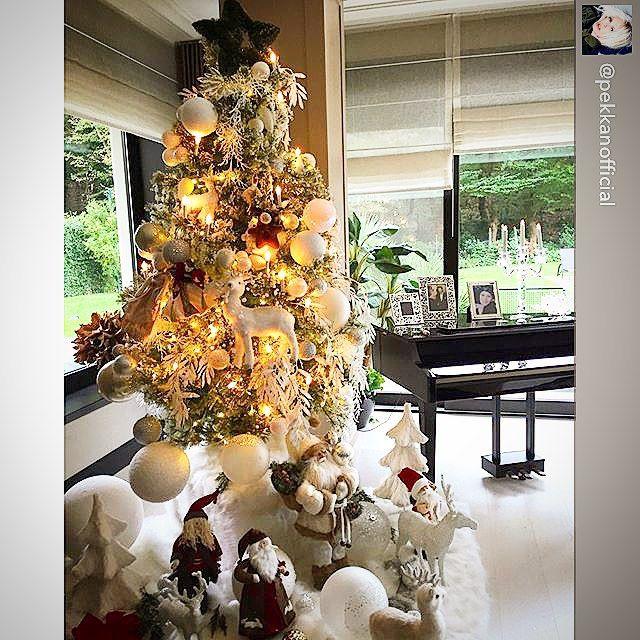 D'lara Chocolate & Events — #festivedilara #dilaratrees @pekkanofficial using...