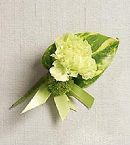 Wedding Flowers Lilydale : Ideas about green carnation on pink