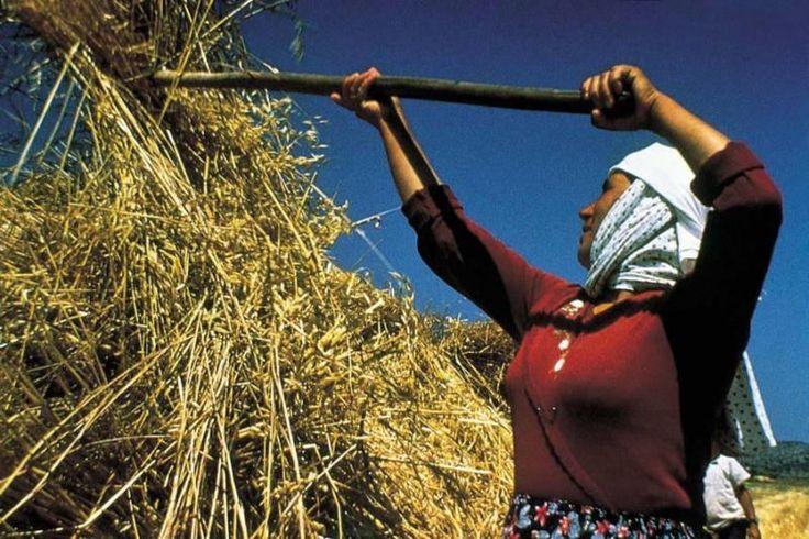 Anadolu da bir köylü Kadını