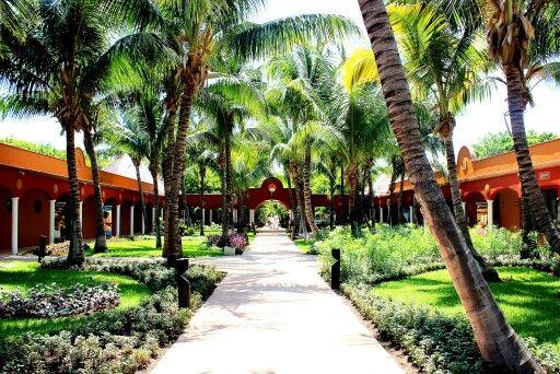 Hoteles Catalonia - Playa Maroma -MEX