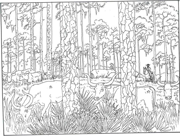 Woods Coloring Forest 4 Free Pages
