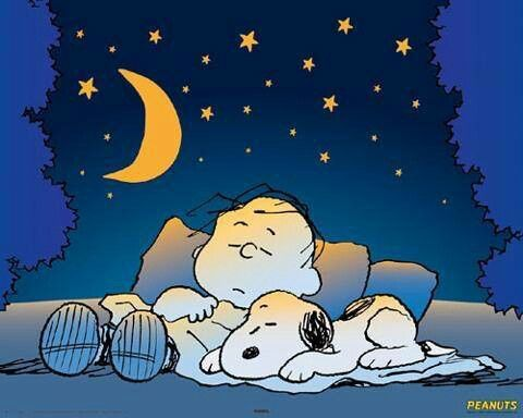 Goodnight Charlie Brown