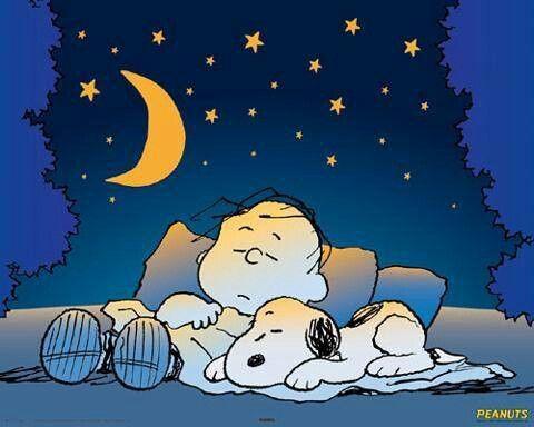 Goodnight                                                                                                                                                                                 Mehr