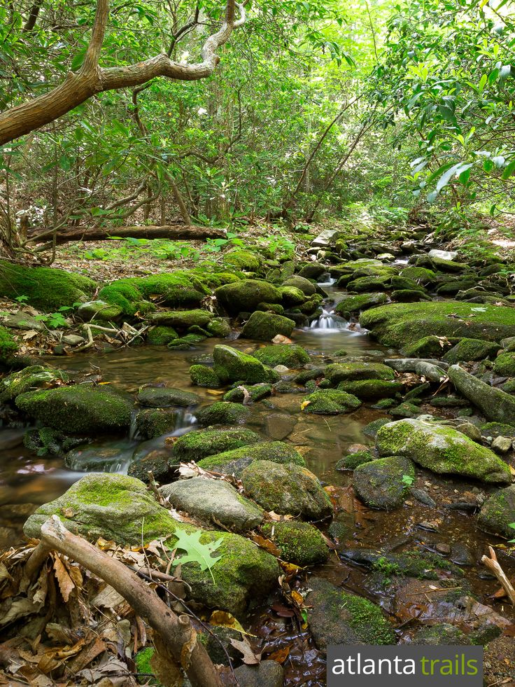 Hike the mossy, stream-filled Byron Reece Trail at Neels Gap, climbing to the Appalachian Trail at Blood Mountain