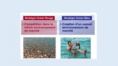 La stratégie océan bleu, élaborée par W. Chan Kim et Renée Mauborgne chercheurs à l'INSEAD, vous propose de sortir du champ traditionnel de la compétition (l'océan rouge) et d'aller vers des marchés qui n'existent pas encore, vierges de concurrence et répondant à des besoins réels et non encore satisfaits de vos clients (les océans bleus).