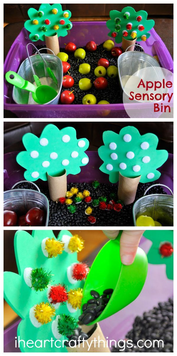 Apple Orchard Sensory Bin for Kids. Great Fall activity for toddlers and preschoolers. Book recommendation within post.