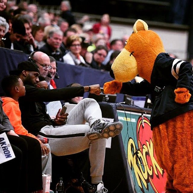 8 best All things Zippy! images on Pinterest | Akron zips ...