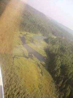 Algonquin Park, Ontario Canada. View from small plane