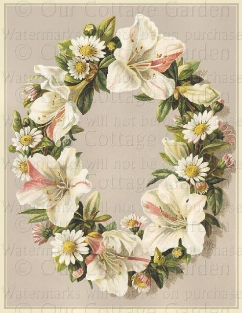 Pink & White Lily with Daisy Wreath