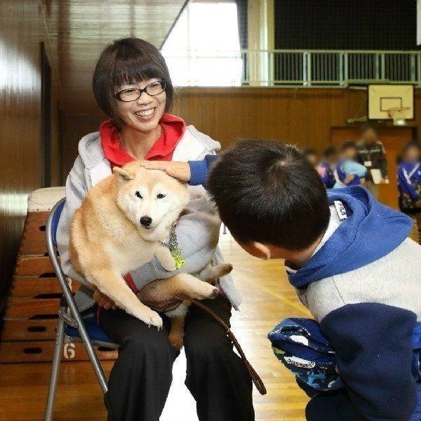 虐待で右目と後ろ足をつぶされ 障がいを負った犬 未来ちゃんに学ぶ 命の授業 いぬのきもちweb Magazine 犬 未来ちゃん いぬ