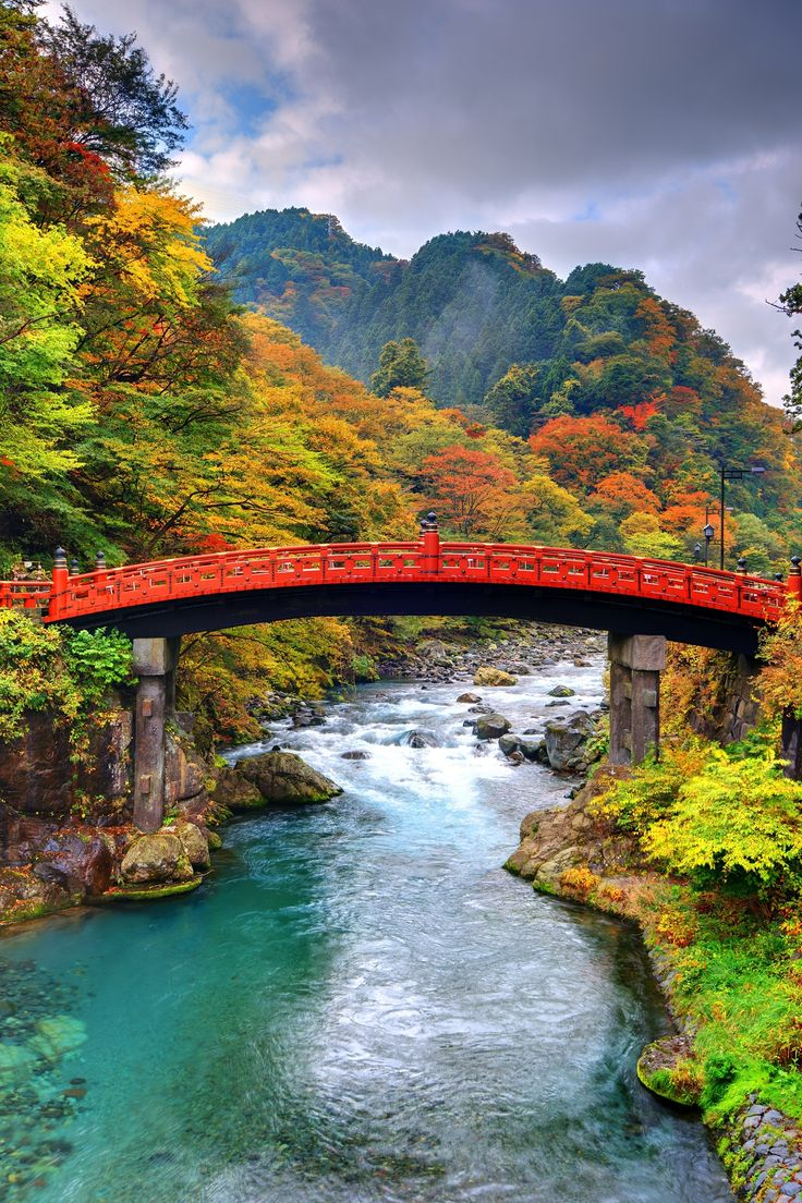 Known for its impressive botanical garden, intricate Iemitsu mausoleum and ornate Toshogu Shrine (a UNESCO World Heritage site), Nikko National Park is an area of incredible natural beauty, with plenty to see and do!