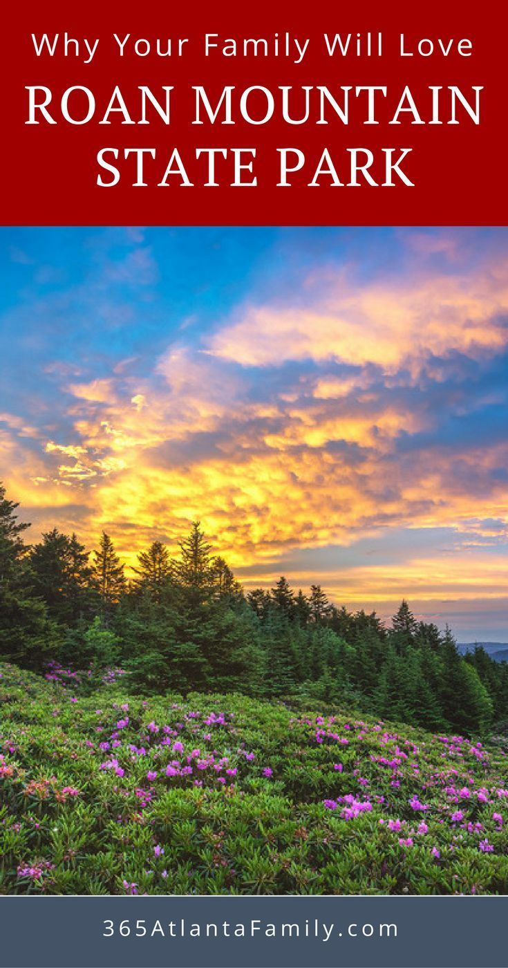 Roan Mountain State Park in Tennessee. Here is why you will love this spectacular 2,000+ acre park that sits at the bottom of Roan Mountain in Tennessee.