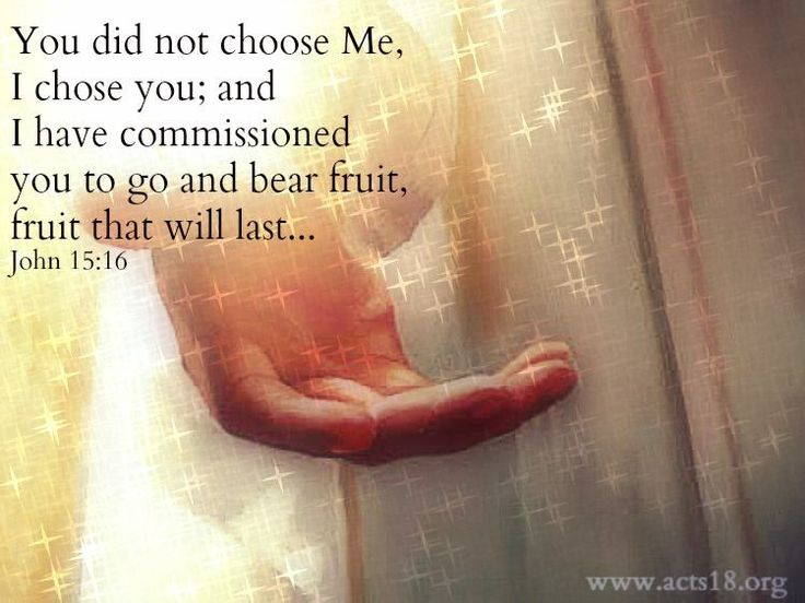 JOHN  15:16  You did not choose Me, but I chose you, and appointed you, that you should go and bear fruit, and that your fruit should remain, that whatever you ask of the Father in My name, He may give to you.