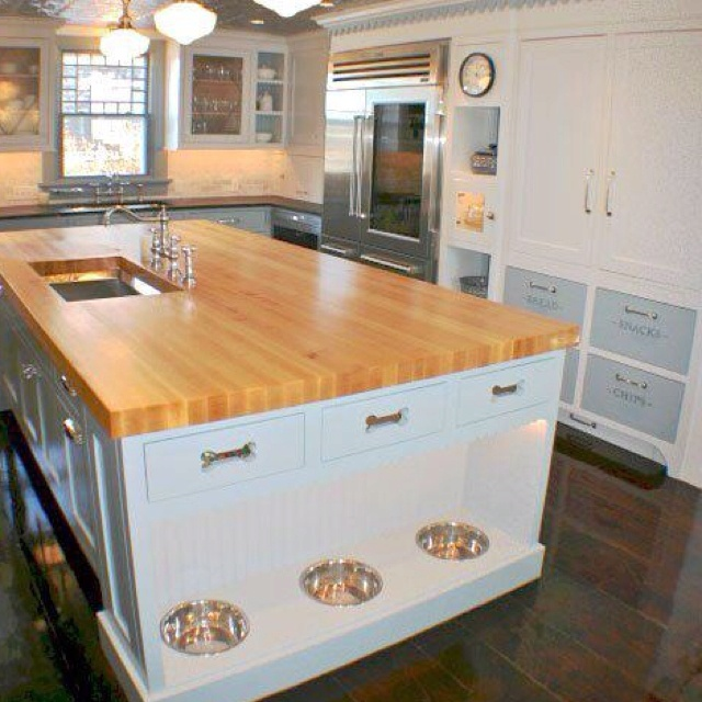 Cool dog kitchen!
