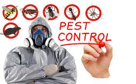 We offer professional and safe Pest Control Services Toronto to our valued customers to further derive our motivation. Our skilled technicians are experts at pest and termite extermination. We specialize in real estate closing inspections, as well as residential and commercial pest inspections. We convey a complete solution for you to keep you comfortable by offering a pest free environment.