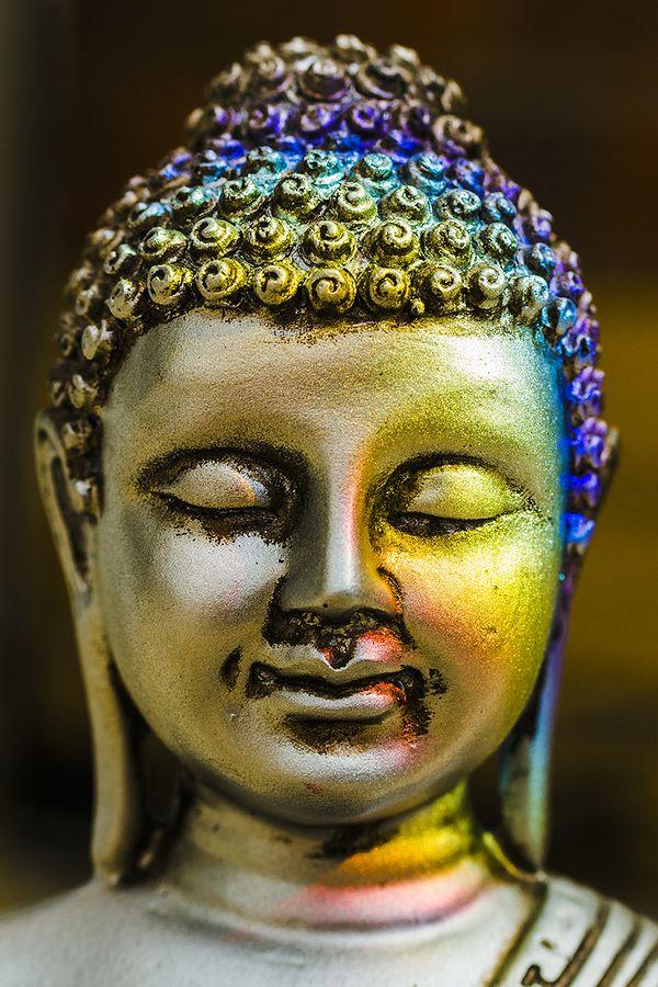 buddhist singles in joy Les dernières actualités cinématographiques, les films en streaming vf, les nouveaux films tirés des films 2017 et bien plus.