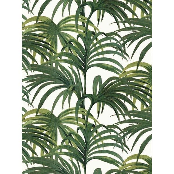 Die besten 25 Palmen druck Ideen auf Pinterest  Palm