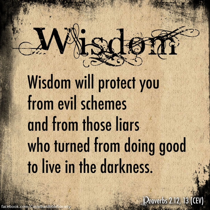 proverbs of solomon holy bible Proverbs, ecclesiastes, song of solomon bible study series leads readers through a penetrating study of the books of proverbs, ecclesiastes and song of solomon.