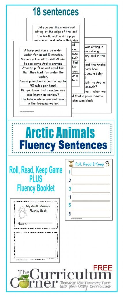 5 0 mens running shoes cheap Arctic Animals Fluency Sentences FREE from The Curriculum Corner