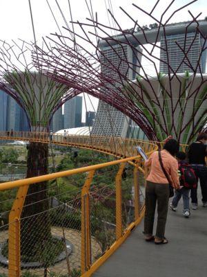 OCBC Skyway salah satu pilihan ni di siang hari melihat pohon2 besi yg spectacular dengan view pemandangan kota singapore #SGTravelBuddy