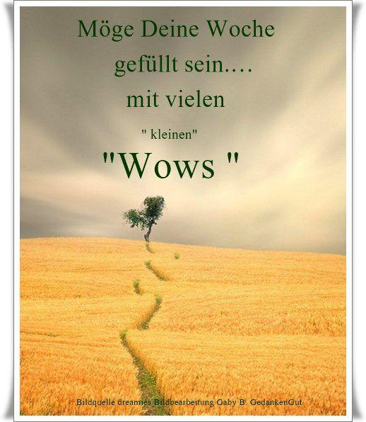 """Möge deine Woche gefüllt sein mit vielen kleinen """"Wows"""" ~ Quelle: GedankenGut https://www.facebook.com/Gaby.GedankenGut/ http://www.dreamies.de"""