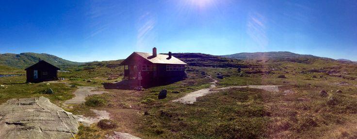 This was taken on Hardangervidda in Norway summer of 2015