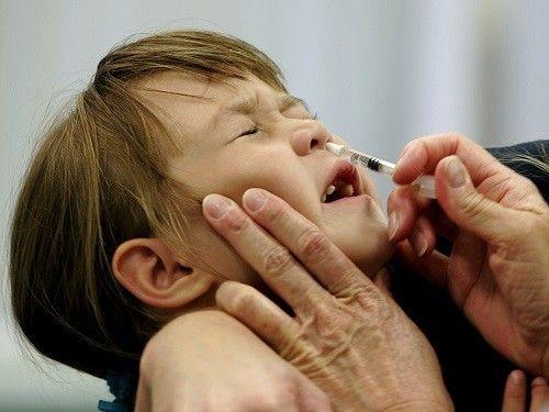 Врач из Чикаго добавлял в детские вакцины водку и кошачью слюну - МедНовости