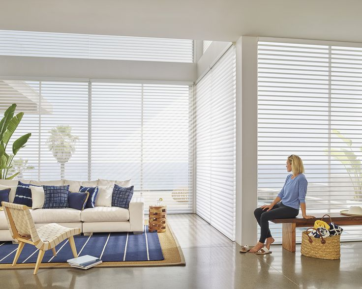 46 best 1 6 scale images on pinterest home architecture for Hunter douglas motorized blinds