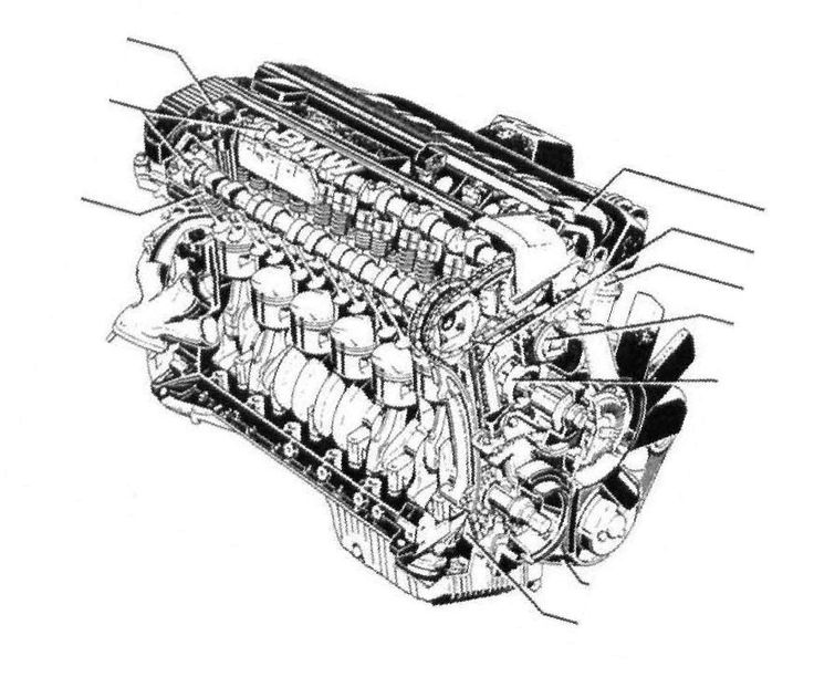 Pin by Angel Muoz on Bmw  Pinterest  BMW Engine and Bmw e36