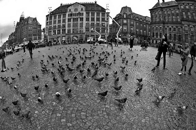 Waiting @ Dam Square, Amsterdam