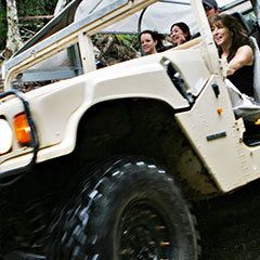 Private Vehicle 1-3 persons starts from $62 Visit http://www.fnqapartments.com/transfers-cairns/is-holiday/ #cairnstransfer