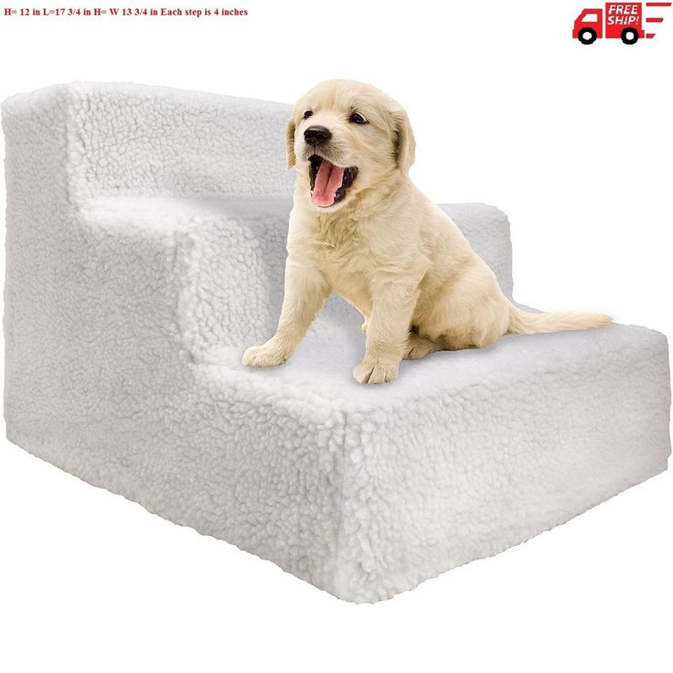 25 Best Ideas About Dog Stairs On Pinterest Pet Stairs
