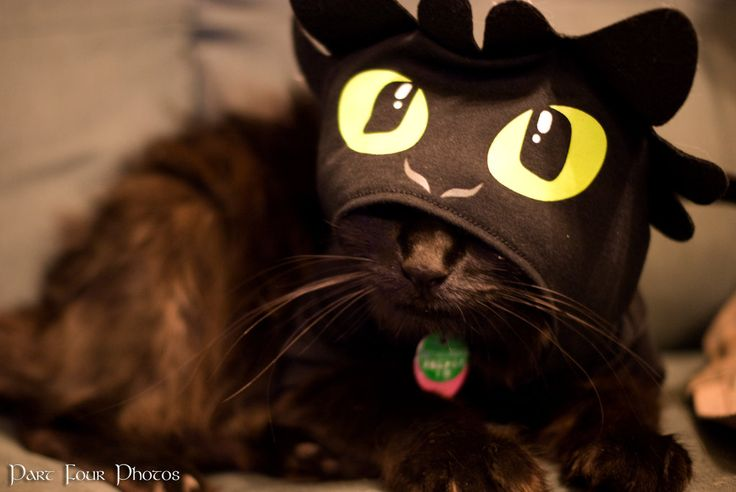 build a bear toothless - Google Search
