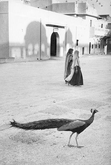 Photographe Marc Riboud
