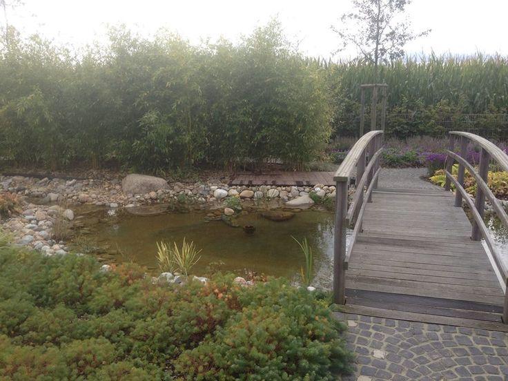 Teichlandschaft mit Brücke